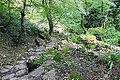 2014 Nowy Aton, Historyczny szlak w kanionie rzeki Psyrccha (17).jpg