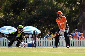 Lilac Hill Park - Sydney Thunder v Perth Scorchers, 2017