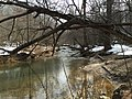 2016-02-08 13 53 43 View south up Difficult Run from the Gerry Connolly Cross County Trail between Vale Road and Lawyers Road in Oakton, Fairfax County, Virginia.jpg