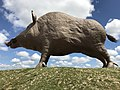 2017-07-04 Woinic - The worlds largest boar 1.jpg