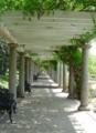2017-08-18 1536 Arbor at Maymont's Italian garden, 2006.png