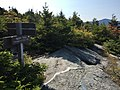 2017-09-11 10 27 24 View south along the Frost Trail at the junction with the Maple Ridge Trail on the western slopes of Mount Mansfield within Mount Mansfield State Forest in Underhill, Chittenden County, Vermont.jpg