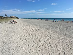 Siesta Key, Florida - Turtle Beach