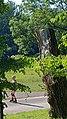 2020-08-09 Isar München nach der Flut 107.jpg