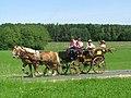 21te Rammenauer Schlossrundfahrt der Pferdegespanne (077).jpg