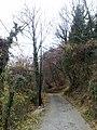 33040 Savogna, Province of Udine, Italy - panoramio (1).jpg