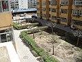 4月末銀川漸漸綠了 - panoramio.jpg