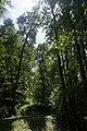 46-212-5002 Трускавецький парк.jpg