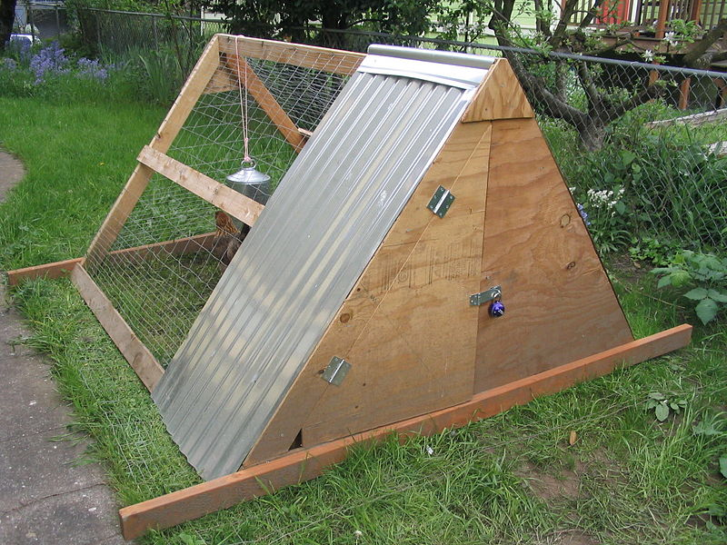 File:A-frame chicken coop back.JPG