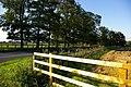 A169 Looking West, Wykeham - geograph.org.uk - 247897.jpg