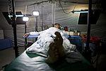 ANA 215th Corps Surgical Team 131102-M-RF397-064.jpg