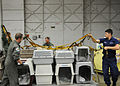A Air Station Sacramento assists with bird rescue DVIDS1093345.jpg