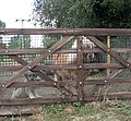 A well guarded gate - geograph.org.uk - 1520829.jpg