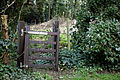 Abbess Roding - St Edmund's Church - Essex England - churchyard west gate in ivy hedge 2.jpg