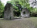 Abbey, St Columb's Park, Derry - Londonderry (geograph 2486270).jpg