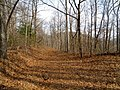 Addis Gap-Miller Creek Rd - panoramio.jpg