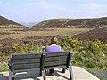 Admiring the view, Beltrim - geograph.org.uk - 1261929.jpg