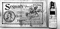 Advertisement for 'Sequah's Indian Prairie Flower' medicine. Wellcome L0000389.jpg