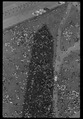 Aerial view of marchers in the shadow of the Washington Monument, 37227u.tiff