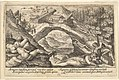 Aftermath of the Flood- human bodies strewn on dry land in the foreground, Noah's ark moored on a rocky outcrop beyond, from a series of engravings for the 'Liber Genesis' MET DP828360.jpg