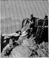 Aimard - Les Chasseurs d'abeilles, 1893, illust page 293.png