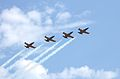 Airbatic team Русь in Sochi.JPG
