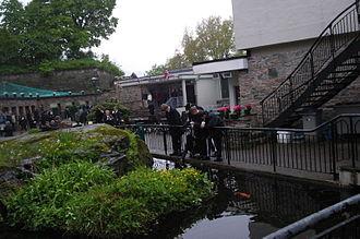 Bergen Aquarium - The cyprinid pond