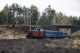Alapaevsk railway TU8-0010 excursion train 20140503 01091.JPG