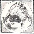 Almanaque de las portenas 1895 (page 99 crop).jpg