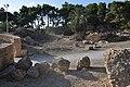 Amphithéâtre romain 74.jpg