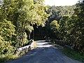 Ample - Pont rive gauche.jpg