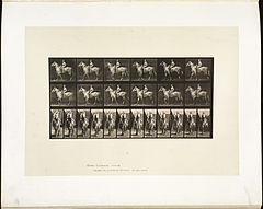 Animal locomotion. Plate 583 (Boston Public Library).jpg