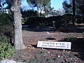 Anna freud garden, givat ram campus of hebrew u., 2 (356988110).jpg