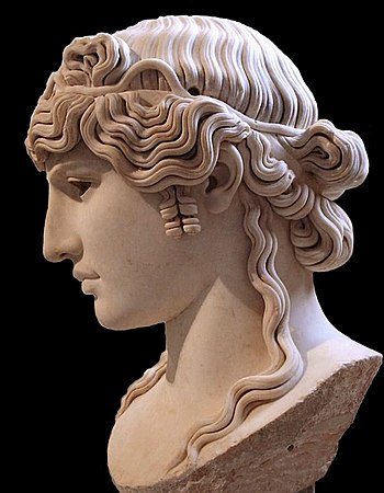 Bust of Antinous, in the Louvre Museum, Paris.