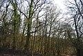 Appletree Wood - geograph.org.uk - 2329944.jpg
