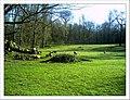 April Parc Natural Mundenhof Freiburg - Master Botany Photography 2013 - panoramio (8).jpg