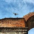 Arch of Galerius. Kamara.jpg
