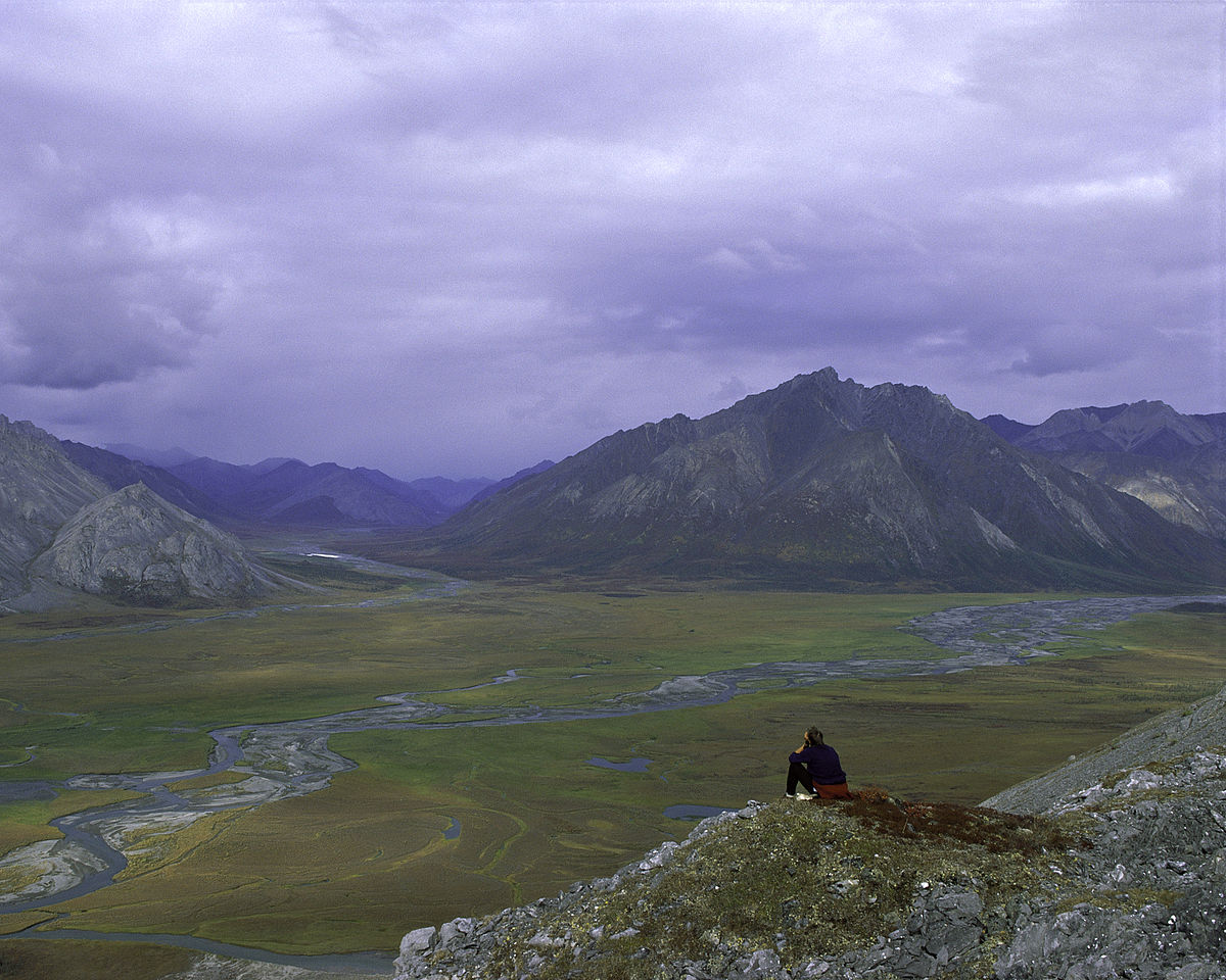 Arctic National Wildlife Refuge - Wikipedia