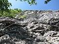 Arrampicata sportiva su parete di roccia calcarea alla Falesia del Picuz a Sangiano, Varese, Italy - 2018-05-06.jpg