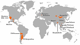 Arsenic contamination of groundwater - Groundwater arsenic contamination areas