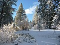Auburn Reservoir in Winter, Wallowa-Whitman National Forest (31245211904).jpg