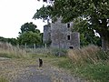 Auchans Ruin, Dundonald - geograph.org.uk - 41717.jpg