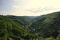 Ausblick Rheinfels.jpg
