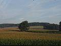 Austrian Countryside (14138359372).jpg