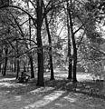 Autumn Fortepan 56812.jpg