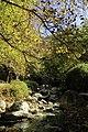 Autumn in Ourika Valley (11278105963).jpg