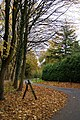 Autumnal lane - geograph.org.uk - 1075998.jpg