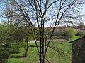Břevnovský klášter (14).jpg