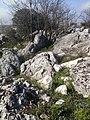 BLOKLU REZERV - panoramio.jpg