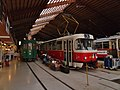 BVB 213 and DPP 7079 in Remise 1.jpg